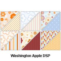 Washington-Apple-DSP