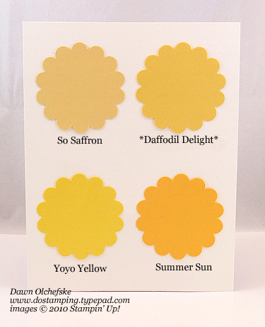 Daffodil-Delight-Compare
