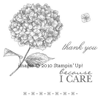 Because-I-Care