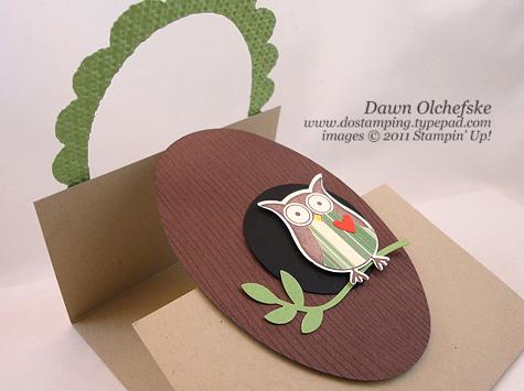 Oval-Frame-Owl-3