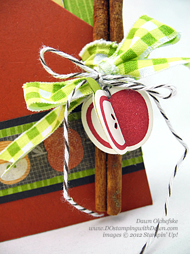 stampin up, dostamping, dawn olchefske, demonstrator, perfectly preserved, cannery framelit, apple cider pouch
