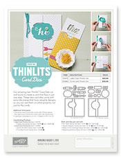 thinlits card dies, stampin up, dostamping, dawn olchefske, big shot, fun fold cards