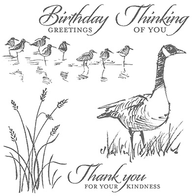 Stampin' Up! Wetlands-126695w-126697c