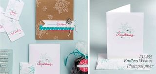 DOstamping, dawn olchefske, stampin up, endless wishes photopolymer