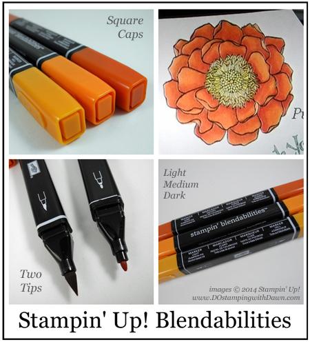 #dostamping #stampinup #dawnolchefske #blendabilities #blendedbloom #diy #artsupplies