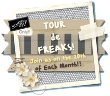 Tourdefreaks2013