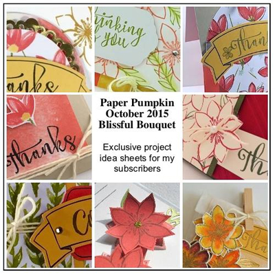 October 2015 Blissful Bouquet Paper Pumpkin Bonus Ideas by Dawn Olchefske  #dostamping #stampinup