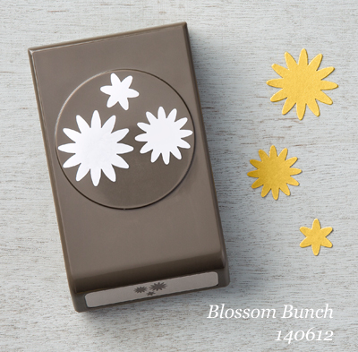 Blossom Bunch Punch 140612 #stampinup #dostamping