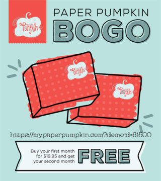 Paper Pumpkin BOGO sale by Stampin' Up! #dostamping, Dawn Olchefske