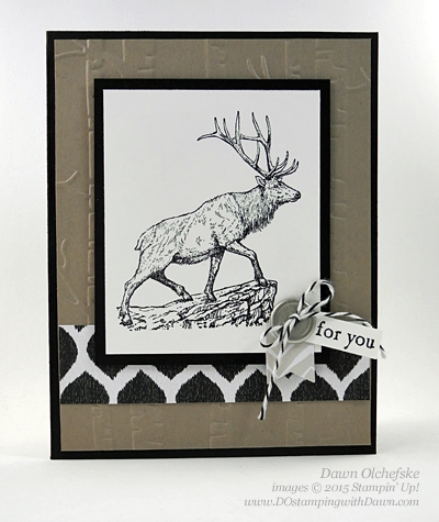 Stampin' Up! Clearance RackGo Wild Designer Series Paper Stack card by Dawn Olchefske #dostamping