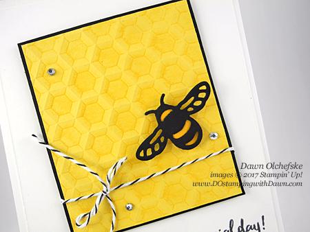 Stampin' Up! Hexagons Dynamic Folder & Dragonfly Dreams Bundle card created by Dawn Olchefske for DOstamperSTARS Thursday Challenge #DSC214 #dostamping