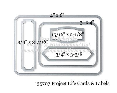 Project Life Cards & Labels Framelit sizes shared by Dawn Olchefske #dostamping #stampinup