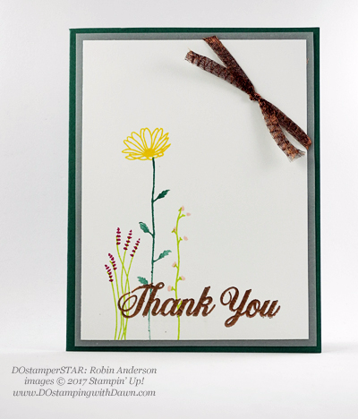 Stampin' Up! Delightful Daisy Bundle swap cards shared by Dawn Olchefske #dostamping (Robin Anderson)