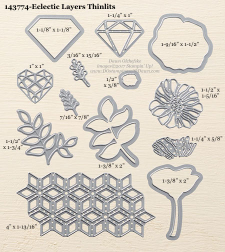 Stampin' Up! Eclectic Layers Thinlits Dies sizes shared by Dawn Olchefske #dostamping