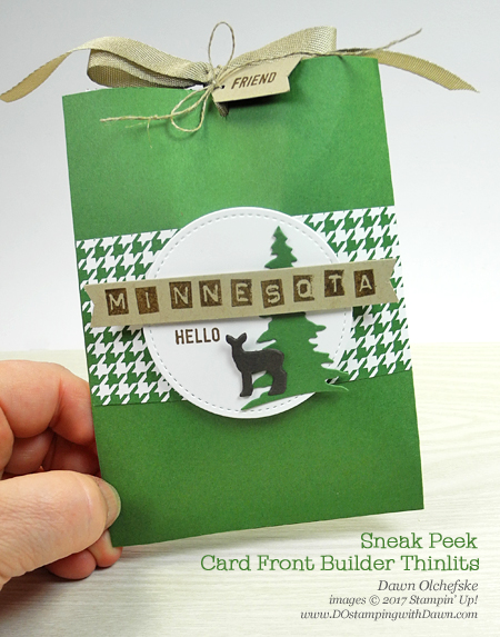 Stampin' Up! Card Front Builder Thinlits Dies Candy Slider pouch by Dawn Olchefske #dostamping
