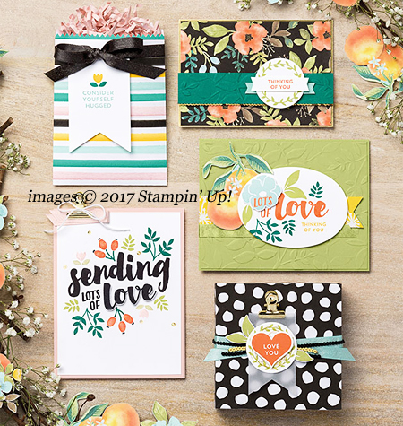 Stampin' Up! Lots of Love stamp set with Whole Lot of Lovely DSP Catalog sample cards shared by Dawn Olchefske #dostamping