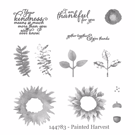 144783-Painted Harvest set ampset - shop with Dawn O #stampinup #dostamping #paintedharvest