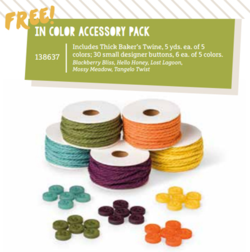 In-Color Accessory Pack-new SAB products for March #dostamping #stampinup