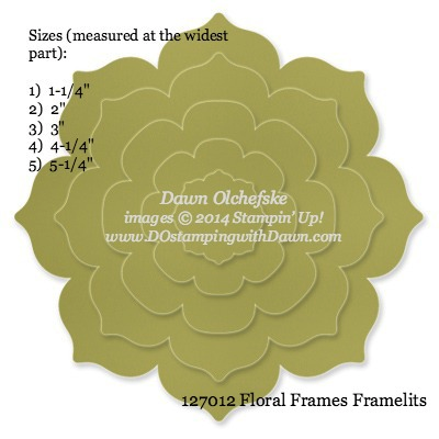 Floral Frames Framelit sizes shared by Dawn Olchefske #dostamping #stampinup