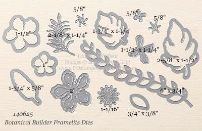 140625 Botanical-Builder Framelits Measurements shared by Dawn Olchefske #dostamping #stampinup