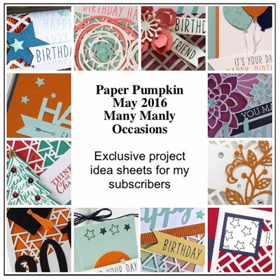 Many Manly Occasions Paper Pumpkin Alternative Ideas BONUS PDF for Subscribers offered by Dawn Olchefske #dostamping #stampinup