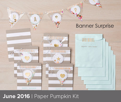 Banner Surprise Paper Pumpkin kit for June 2016 #dostamping #stampinup