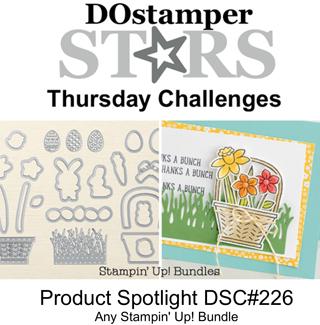 DSC#226