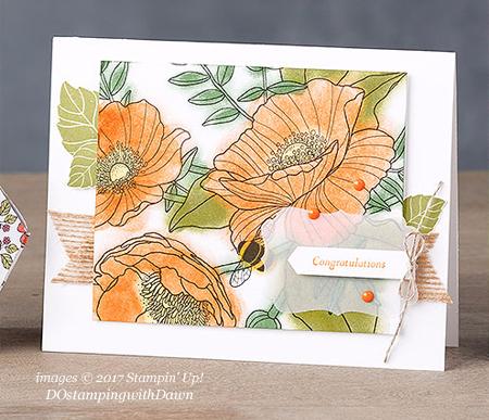 Stampin' Up! Sale-a-Bration Inside The Lines Designer Series Paper shared by Dawn Olchefske #dostamping