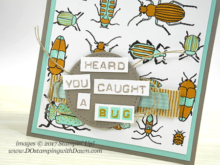 Stampin' Up! Beetles & Bugs stamp set shared by Dawn Olchefske #dostamping