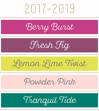 New 2017-19 Stampin' Up! In Colors #dostamping