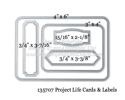 Project Life Cards & Labels Framelit sizes shared by Dawn Olchefske #dostamping #stampinup