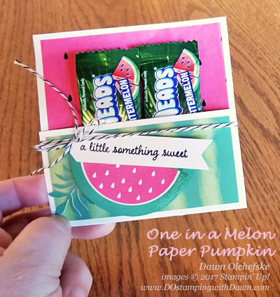Paper Pumpkin One in a Melon Treat Holder by Dawn Olchefske #dostamping