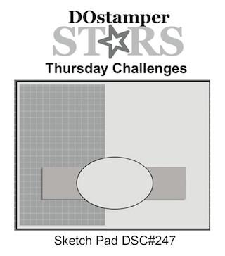 DSC#247