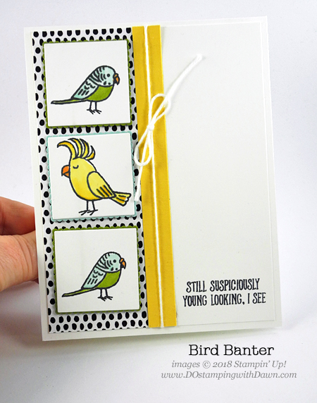 Stampin' Up! Bird Banter card shared by Dawn Olchefske for DOstamperSTARS Thursday Challenge #DSC274 #dostamping #stampinup #handmade #cardmaking #stamping #diy #rubberstamping #papercrafting #birthdaycard #birdbanter #stampinblends