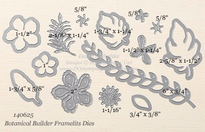 Botanical Builder Framelits Dies sizes shared by Dawn Olchefske #dostamping #stampinup