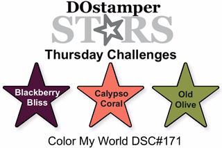 DOstamperSTARS Thursday Color Challenge DSC#171, #dostamping, #stampinup