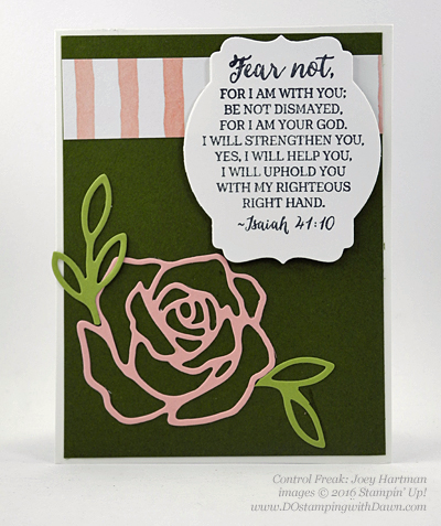 Rose Wonder Bundle card swap shared by Dawn Olchefske #dostamping #stampinup (Joey Hartman)