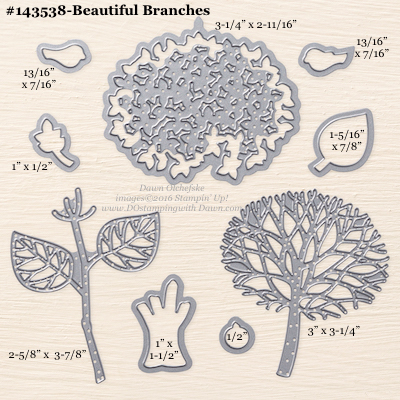 Measurements for Stampin' Up!'s Beautiful Branches Thinlit Dies #dostamping (available Aug 2016)