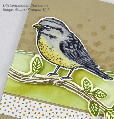 Stampin' Up! Best Birds Bundle card shared by Dawn Olchefske #dostamping