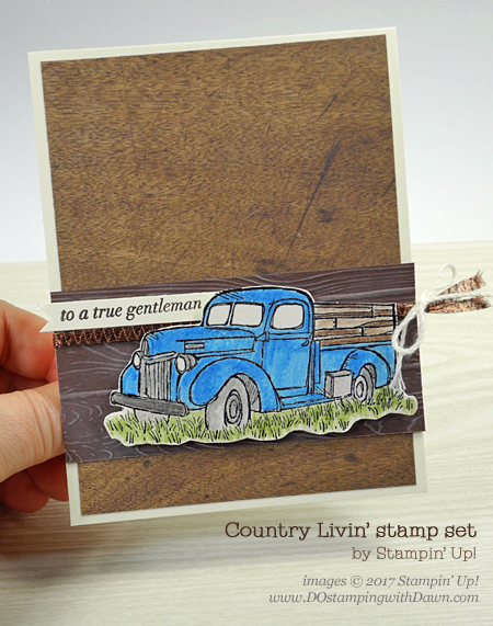 Stampin' Up! Country Livin' CASE the Catty card shared by Dawn Olchefske #dostamping