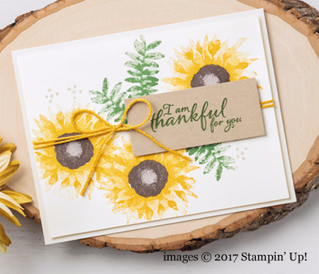 Stampin' Up! Painted Harvest Bundle samples shared by Dawn Olchefske #dostamping  #stampinup #handmade #cardmaking #stamping #diy #paintedharvest