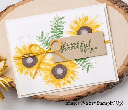 Stampin' Up! Painted Harvest Bundle samples shared by Dawn Olchefske #dostamping #stampinup #handmade #cardmaking #stamping #diy #paintedharvest