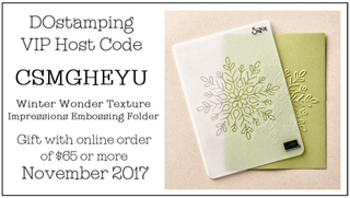 DOstamping November Host Code (CSMGHEYU) & Gift (Winter Wonder Texture Folder), Shop with Dawn Olchefske #stampinup #dostamping #hostcodegift