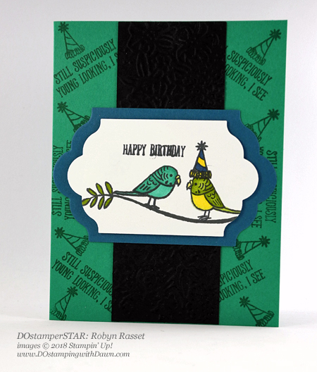 Stampin' Up! DOstamperSTARS Bird Banter swap shared by Dawn Olchefske #dostamping  #stampinup #handmade #cardmaking #stamping #diy #rubberstamping #papercrafting #DOstamperSTARS #2018OccasionsCatalog #birthdaycards #birdbanter (Robyn Rasset)