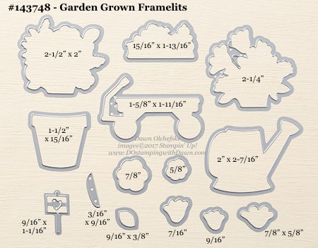 Stampin' Up! Garden Grown Framelit Dies sizes shared by Dawn Olchefske #dostamping