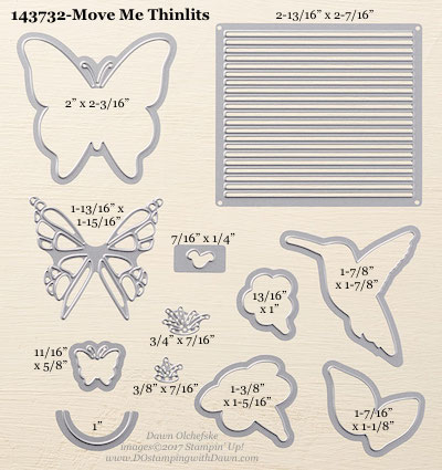 Stampin' Up! Move Me Thinlit Dies sizes shared by Dawn Olchefske #dostamping