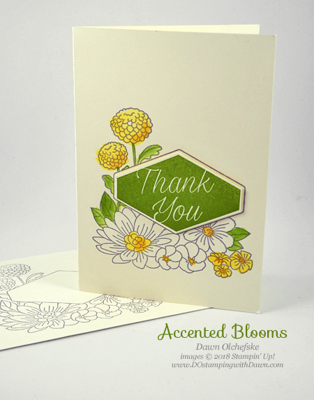 Stampin' Up! Accented Blooms Note Card by Dawn Olchefske #dostamping  #stampinup #handmade #cardmaking #stamping #diy #rubberstamping #papercrafting #accentedblooms #stamparatus