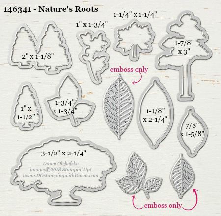 Nature's-Roots---146341