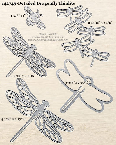 Stampin' Up! Detailed Dragonfly Thinlits Dies sizes shared by Dawn Olchefske #dostamping