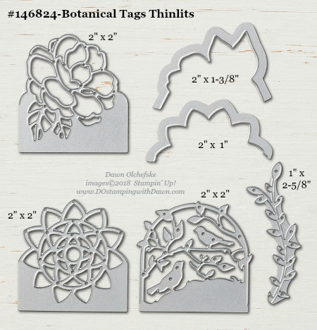 Botanical Tags Thinlits-146824-DOstamping Stampin' Up! Framelits Measurements sizes for 2018-2019 Annual Catalog #stampinup #dostamping #framelitsizes